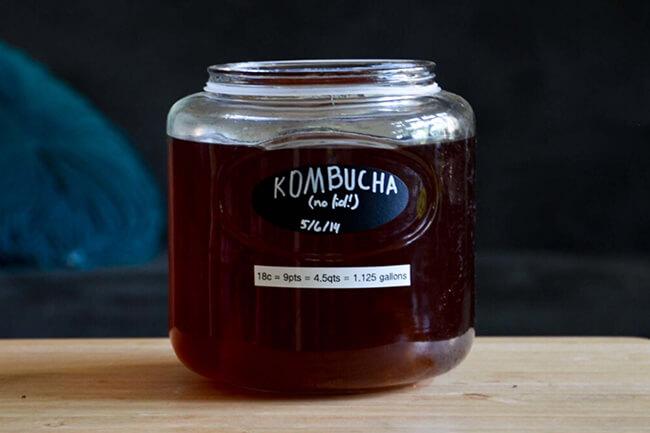 Best Kind Of Kombucha Flavors Involving Spice